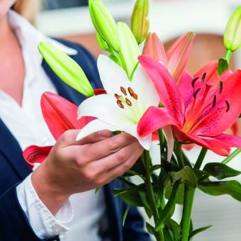 """Mit dem Webtool-basierten Modul """"Blumenservice"""" können Trauernde auf der Bestatterwebsite Blumengrüße, Kränze oder Gestecke bequem und einfach von zu Hause aus bestellen."""